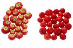 在白色的两个小组中安排的草莓 免版税库存图片