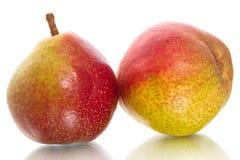 在白色的两个成熟梨 免版税库存图片