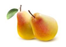 在白色的两个黄色红色梨 免版税库存照片
