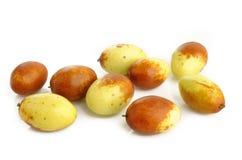 在白色的中国枣果子 免版税库存图片