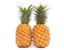 在白色的二个成熟菠萝 库存图片