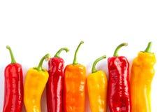 在白色的五颜六色的辣椒粉 免版税库存图片