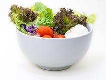 在白色的健康沙拉 免版税库存图片