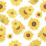 在白色的向日葵传染媒介无缝的样式 免版税库存照片