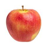 在白色的唯一新鲜的湿苹果 库存图片