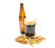 在白色的啤酒和鱼开胃菜 免版税库存图片