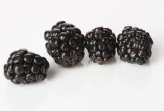 在白色的四个黑莓 图库摄影