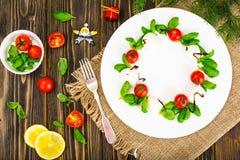 在白色的圣诞节花圈caprese沙拉欢乐开胃菜制地图 库存照片