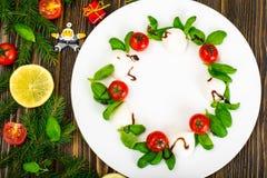 在白色的圣诞节花圈caprese沙拉欢乐开胃菜制地图 免版税库存照片
