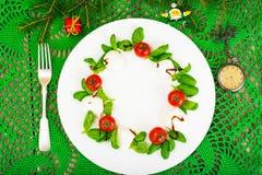 在白色的圣诞节花圈caprese沙拉欢乐开胃菜制地图 免版税库存图片