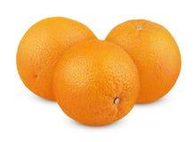 在白色的成熟橙色果子 库存图片