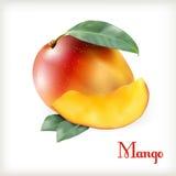 在白色的成熟芒果 库存照片