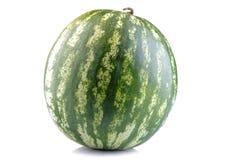 在白色的新鲜的成熟整个西瓜隔绝了背景 图库摄影