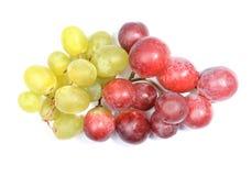 在白色的新鲜的绿色和红葡萄 免版税库存照片