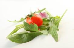 在白色的新鲜蔬菜 库存照片