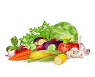 在白色的新鲜蔬菜 向量例证