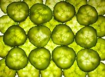 在白色的新黄瓜片式 免版税库存照片