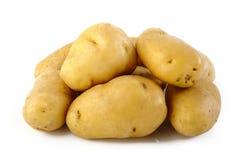在白色的未加工的土豆 图库摄影