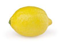 在白色的柠檬 库存图片