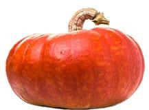在白色的橙色南瓜 免版税库存照片
