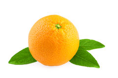 在白色的橙色果子 免版税库存照片