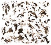 在白色的泥 免版税库存照片