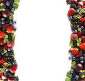在白色的混合莓果 莓果和果子在图象边界与拷贝空间文本的 黑蓝色和红色食物 成熟的黑莓 库存照片