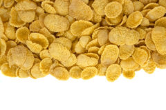 在白色的玉米片顶视图 免版税库存图片