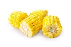 在白色的甜黄色新鲜的玉米 库存照片