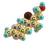 在白色的硫胺(维生素B1)分子结构 免版税图库摄影