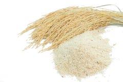 在白色的糙米和水稻孤立 库存图片
