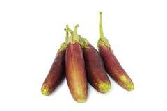 在白色的紫色茄子 库存照片