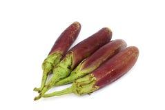 在白色的紫色茄子 免版税库存图片