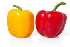 在白色的红色和黄色甜椒 库存照片