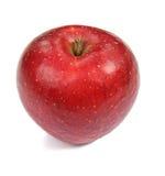 在白色的红色苹果 库存图片