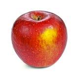 在白色的红色苹果 免版税库存图片