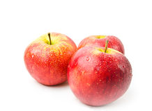 在白色的红色苹果 库存照片