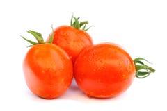 在白色的红色蕃茄 库存图片