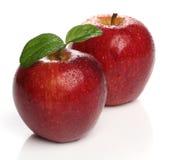 在白色的美味健康红色苹果 免版税图库摄影