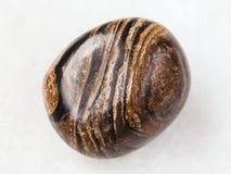在白色的翻滚的stromatolite宝石 库存图片
