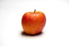 在白色的老红色苹果 库存图片