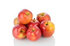 在白色的节目苹果 免版税库存图片
