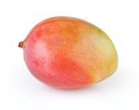 在白色的芒果 免版税库存照片