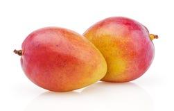 在白色的芒果 免版税库存图片
