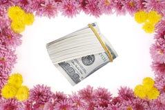 在白色的花卉框架 免版税图库摄影