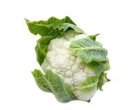 在白色的花椰菜 图库摄影