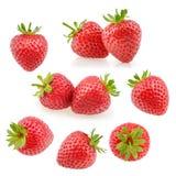 在白色的草莓果子 汇集 免版税图库摄影