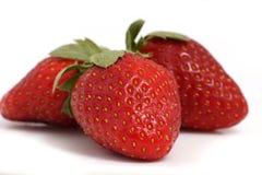 在白色的草莓 图库摄影