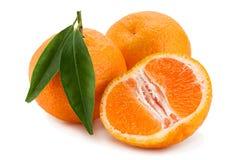 在白色的蜜桔热带水果 库存照片