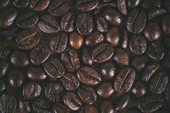 在白色的豆早餐咖啡理想的查出的宏指令 向量例证